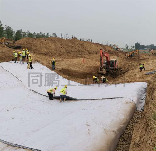 GCL覆膜膨润土防水毯
