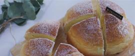 来南阳乐谦了解一下奶酪面包是怎样制作的?