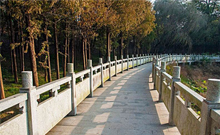 户外景观栏杆的多种用途你知道吗