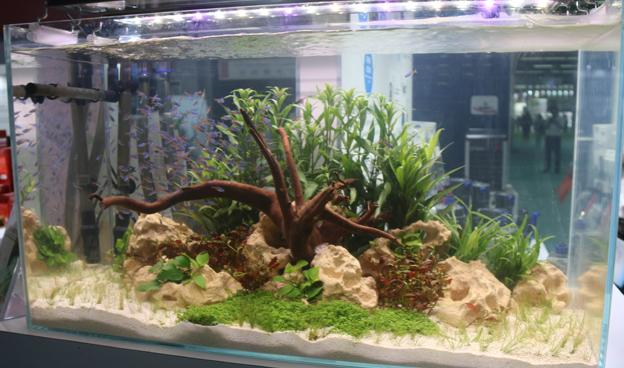 水族玻璃鱼缸