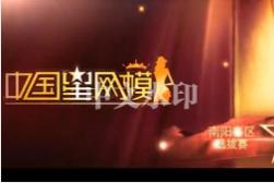 中国星网模大赛南阳地区组委会星网模学院南阳分校李德轩武术学校