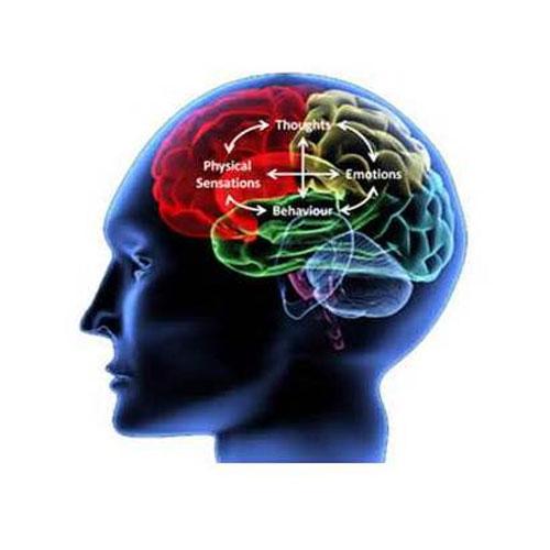 心理学认知行为疗法