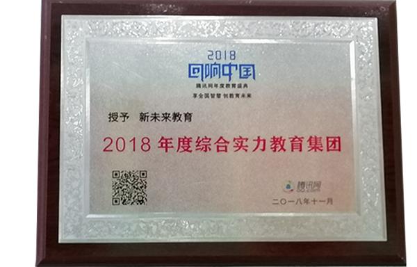 2018年度综合实力教育集团