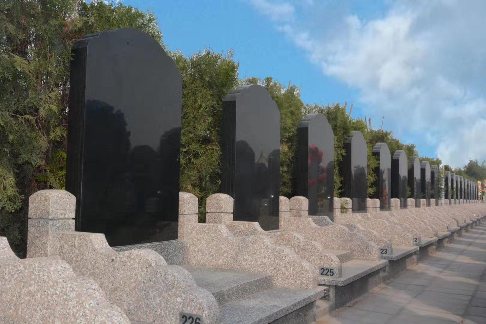 涿州墓地分享什么是树葬和其发展
