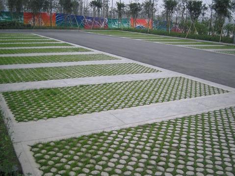 停车场彩色植草地坪