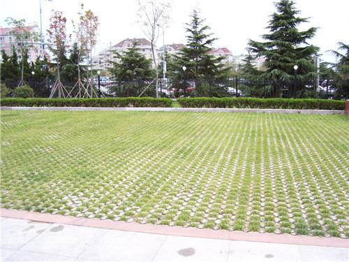 重庆人行步道植草地坪