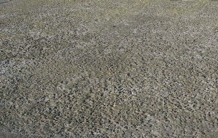 清水混凝土修复