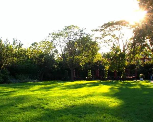 「花园草坪」的布局及养护经验大总结,不看后悔哦!