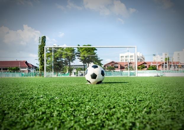 「足球场草坪」应该用哪些种类的草坪来建设?