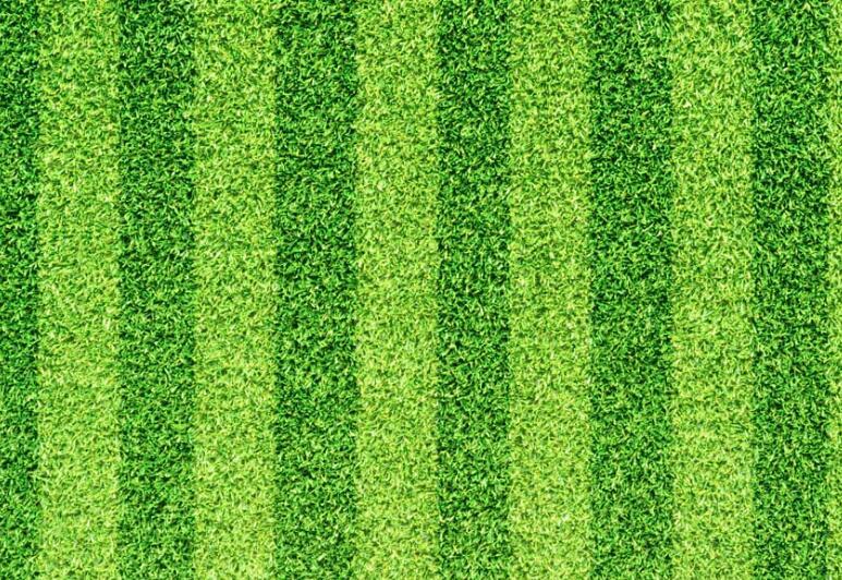 人工草坪每平方米价格是多少?