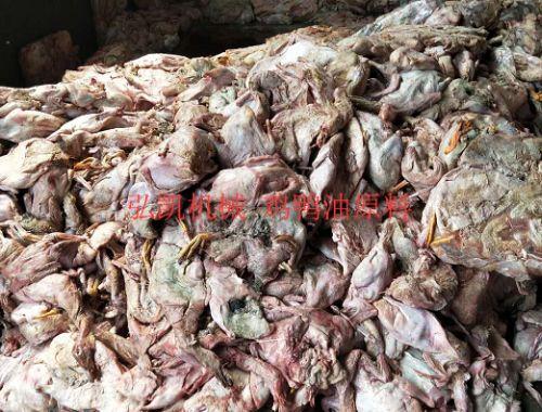 广东鸡鸭油熬炼设备厂家