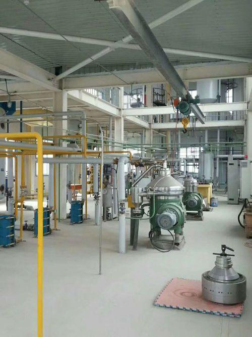 新疆动物油精炼设备厂家