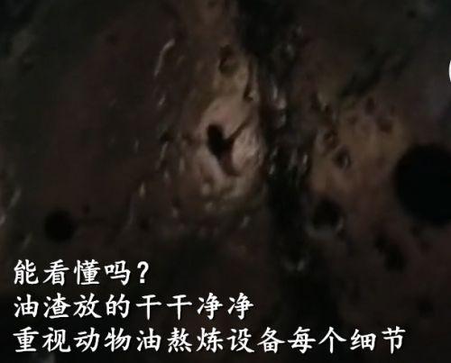 湖南猪油精炼设备厂家