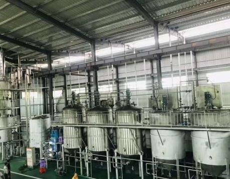 精炼油设备厂