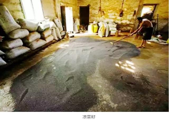 传统的榨油工艺