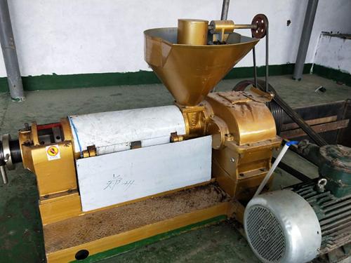 猪油渣榨油机械
