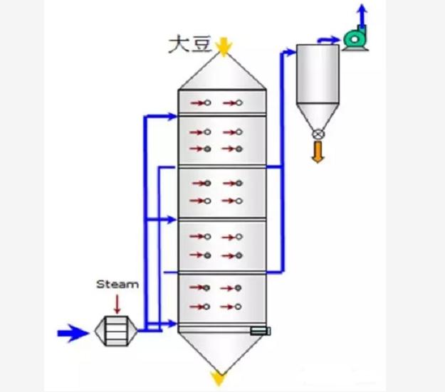 大豆调质图