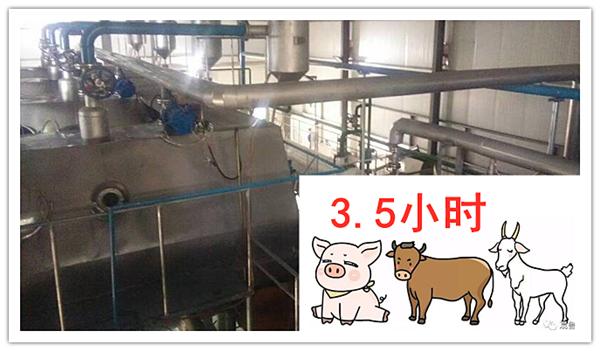 猪油提炼时间