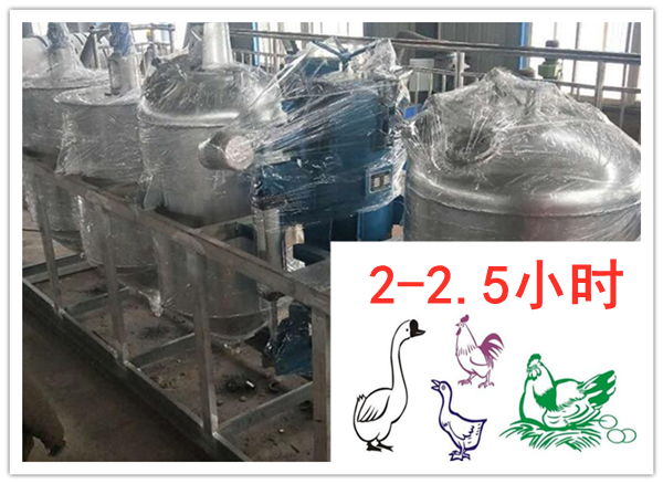 鸡鸭油提炼时间