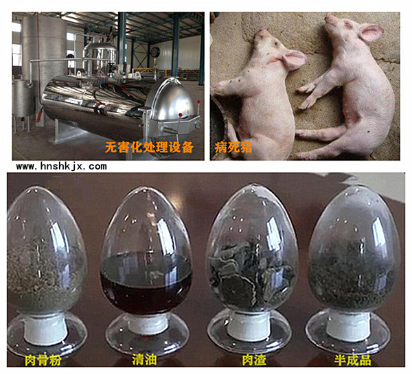 死猪无害化处理设备