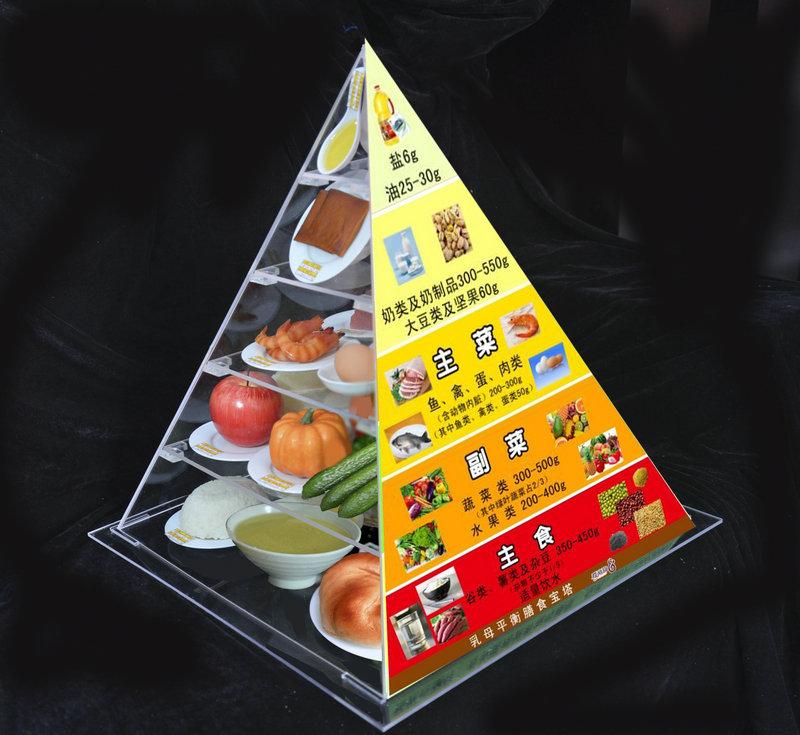 安阳膳食指导模型厂家让孩子改掉挑食的毛病