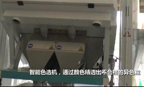 湖南大米加工机械生产厂家