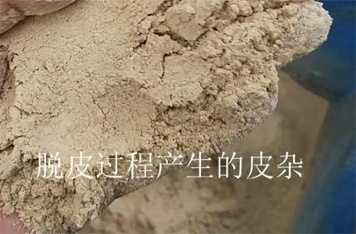 青稞制粉生产线
