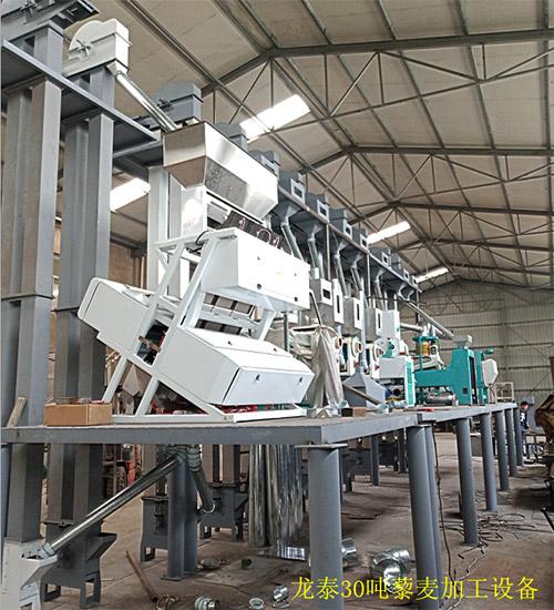 四川藜麦加工机械