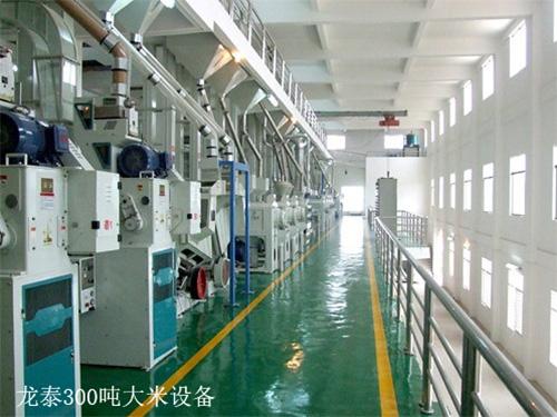 300吨碾米机成套设备价格