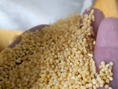 小米加工设备批发价格