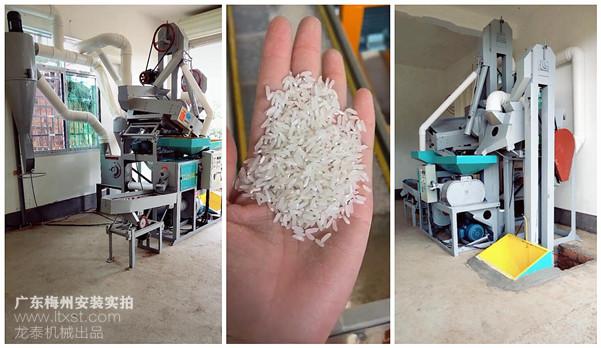 商用碾米设备