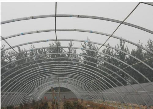 陕西蔬菜大棚建造