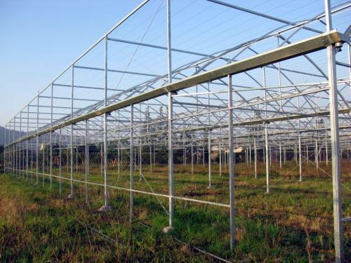 安阳蔬菜大棚建造