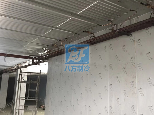 中海盛大型低温冷链储存冷库