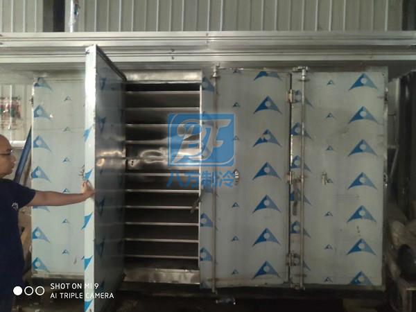菲律宾移动低温速冻冷库