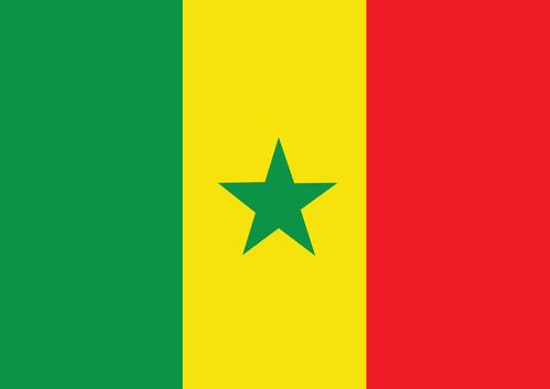 塞内加尔抗击新型冠状病毒