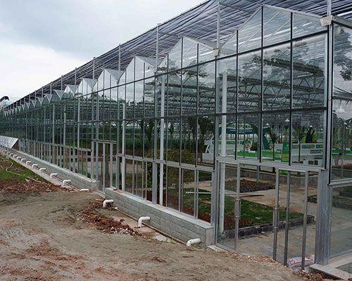 小型玻璃温室大棚