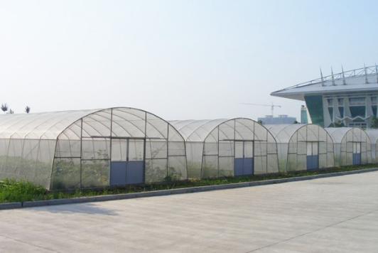温室大棚建造应按照当地的气候土质进行选择