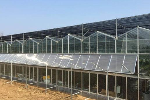 在雨季蔬菜溫室大棚如何防護