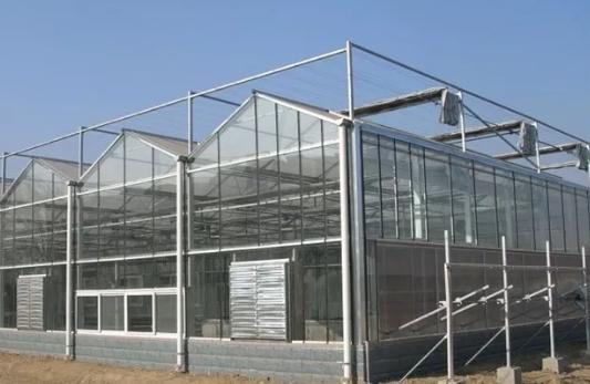 关于冬季温室大棚通风换气的三个要求
