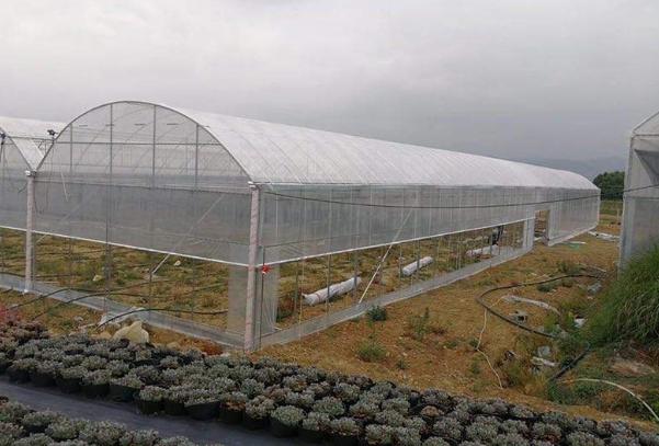 新型温室大棚为什么要灭菌消毒?