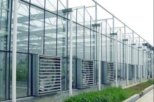 西安联动智能温室建设