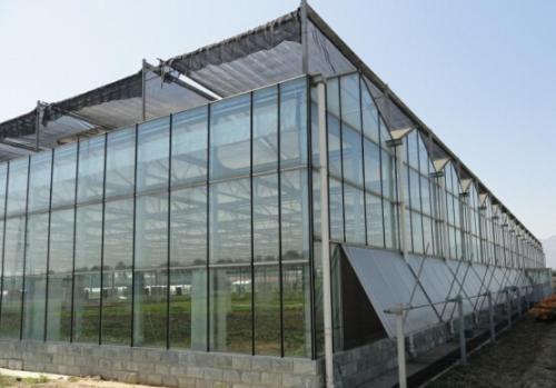 智能连栋温室造价