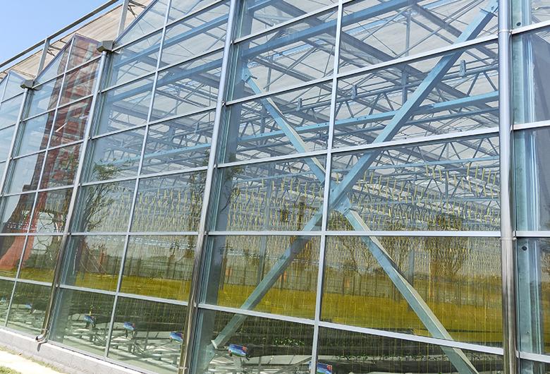 蔬菜溫室大棚的監控系統可以實現無土栽培管理