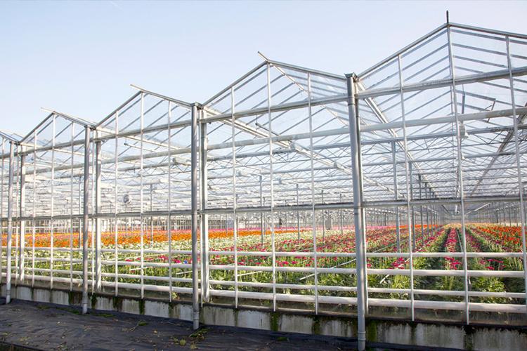 温室大棚内一般都配有哪些装置?