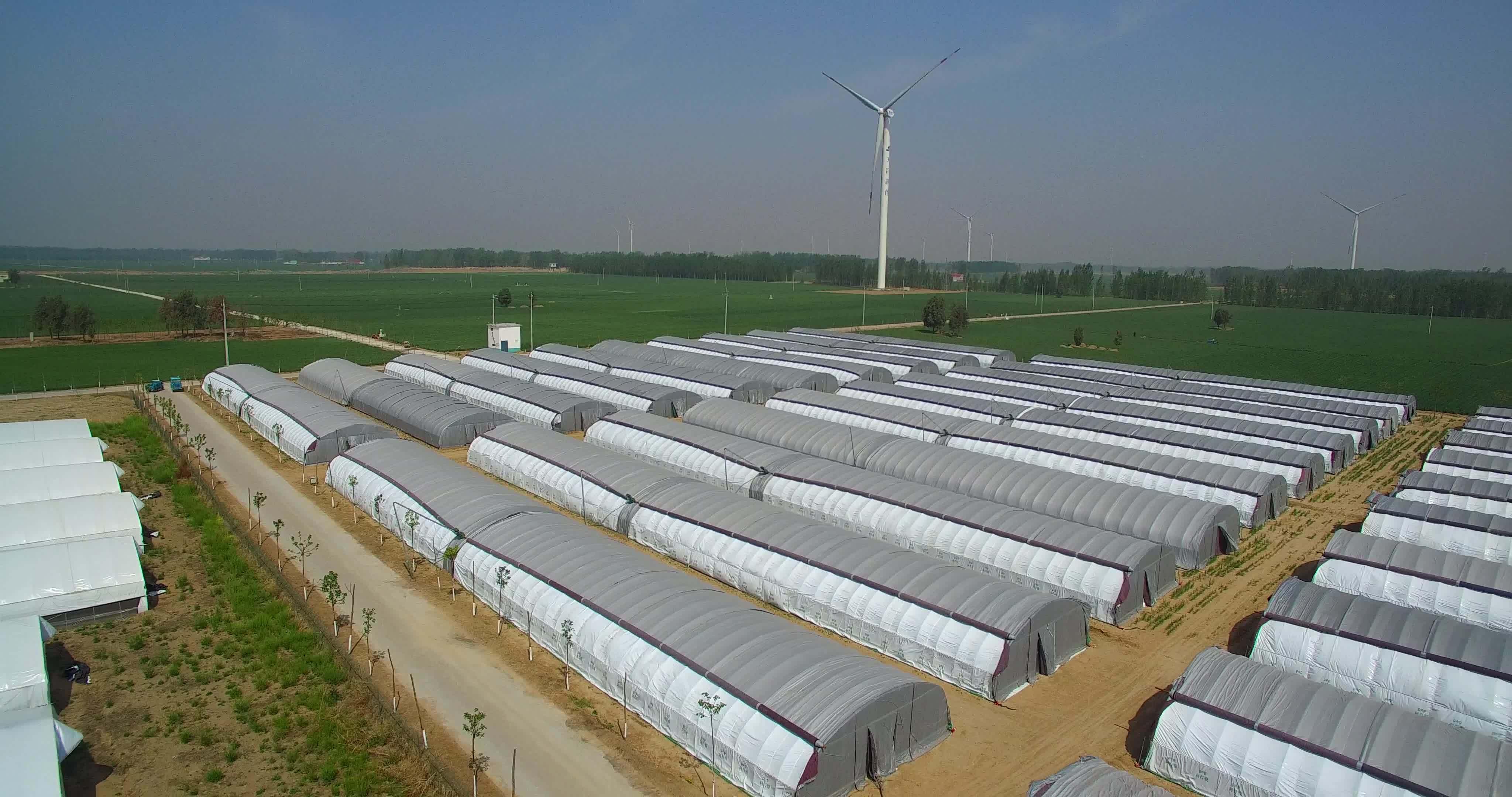 小型温室大棚