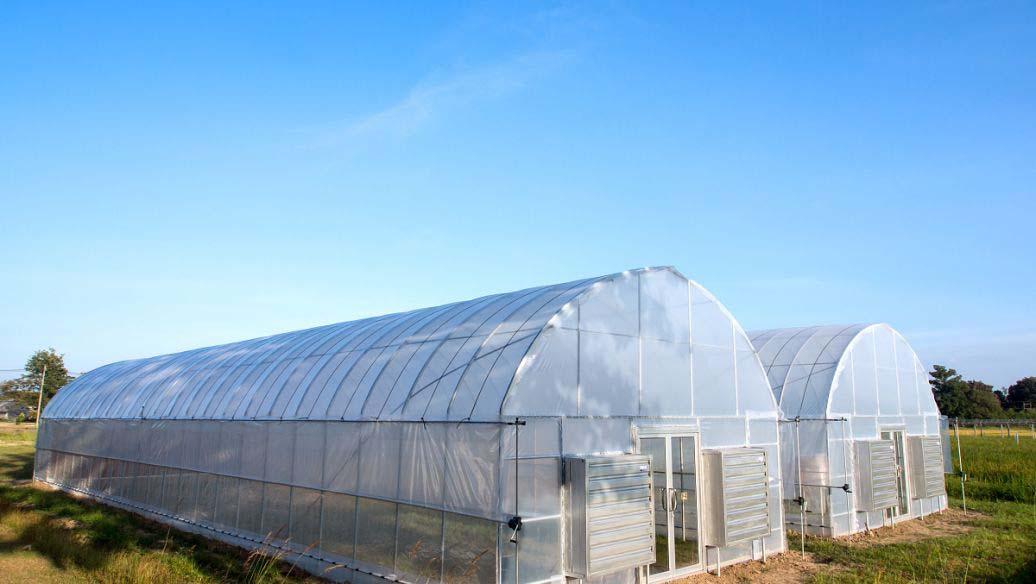 拱圆温室大棚