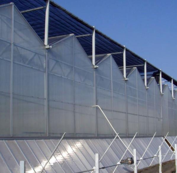 新型阳光板温室大棚