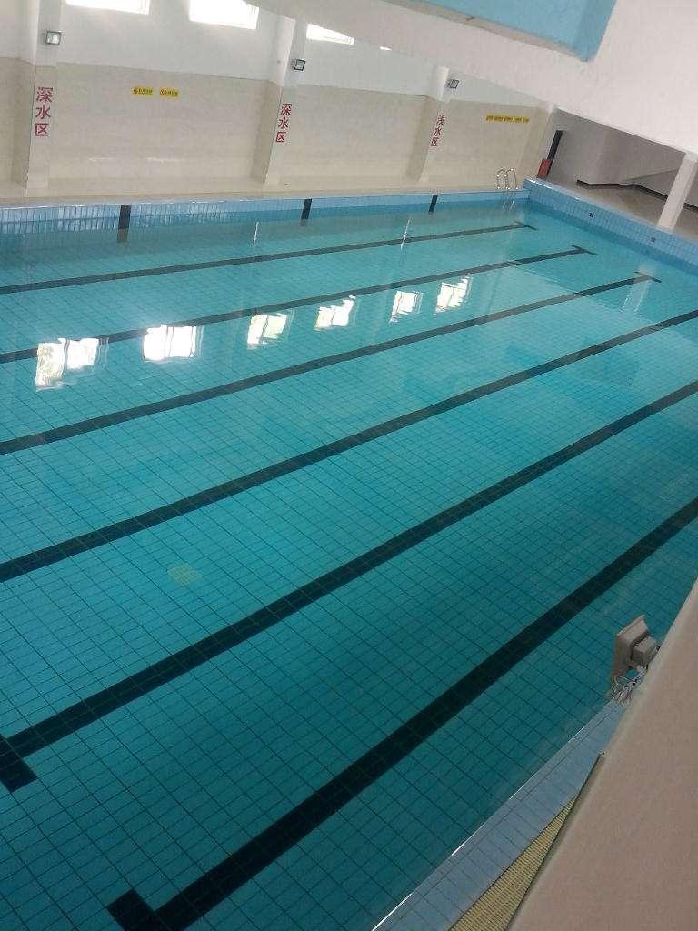 泳池设备分类的组成有哪些