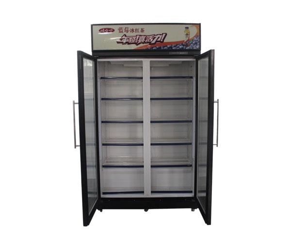 立式玻璃门冷藏柜冷冻柜(双门)